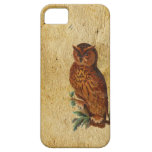 Vintage Owl iPhone 5 Cover