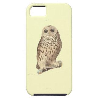Vintage owl plate painting print iPhone SE/5/5s case