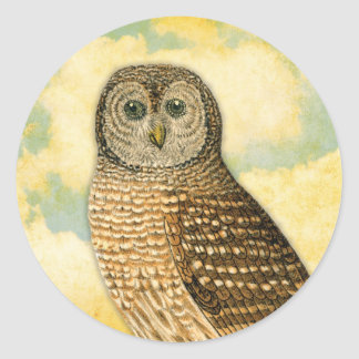 Vintage Owl with Clouds Classic Round Sticker