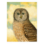 Vintage Owl with Clouds Postcard