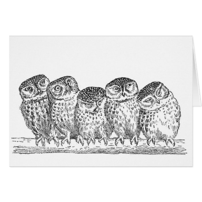Vintage Owls Card