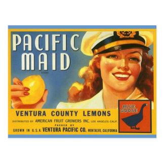Vintage Pacific Maid Lemons Sailor Gal Postcards