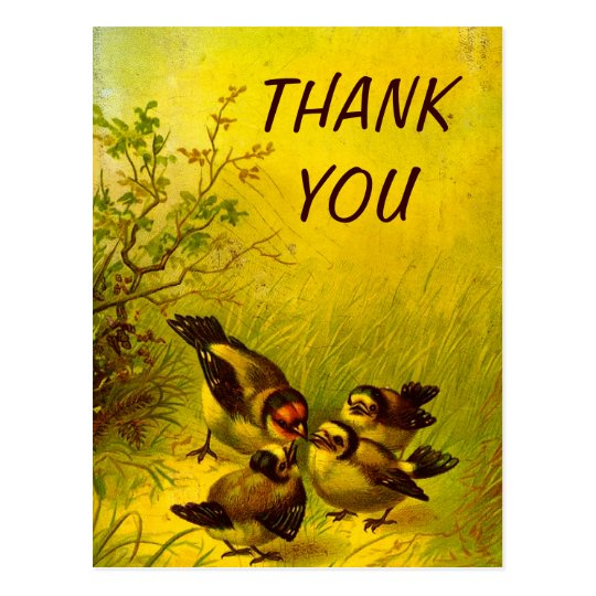 Vintage Painted Sparrows Thank You Postcard