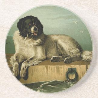 Vintage painting: Bucovina Shepherd Coaster