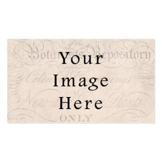 Vintage Pale Rose Pink Script Text Parchment Paper Double-Sided Standard Business Cards (Pack Of 100)