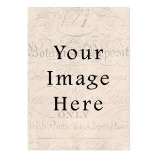 Vintage Pale Rose Pink Script Text Parchment Paper Large Business Cards (Pack Of 100)