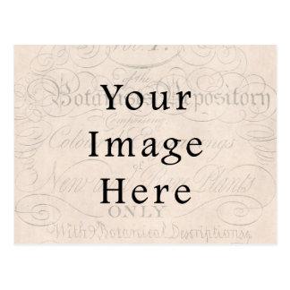 Vintage Pale Rose Pink Script Text Parchment Paper Postcard