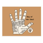 Vintage palm reading palmistry Hand Map Postcard