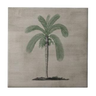 Vintage Palm Tree Ceramic Tile