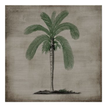 Beach Themed Vintage Palm Tree Poster
