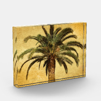 Vintage Palm Tree - Tropical Customized Template Acrylic Award