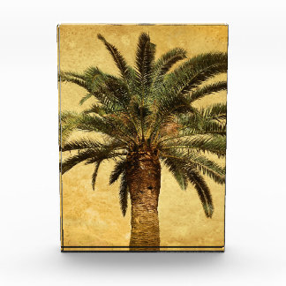 Vintage Palm Tree - Tropical Customized Template Award