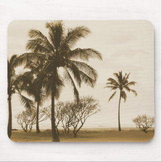 Vintage Palm Trees Mouse Pads