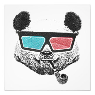 Vintage panda 3-D glasses Photo Print