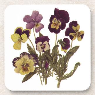 Vintage Pansies in Bloom, Floral Garden Flowers Beverage Coaster