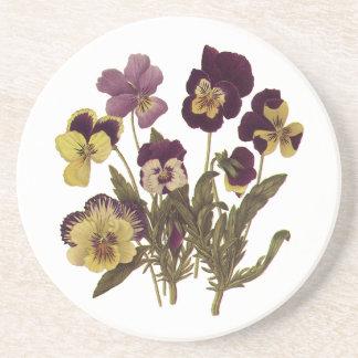 Vintage Pansies in Bloom, Floral Garden Flowers Sandstone Coaster