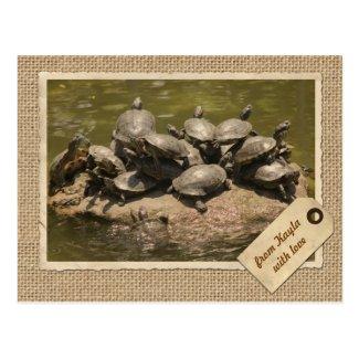 Vintage Paper Frame Travel Tag Turtles Rock Japan Post Cards