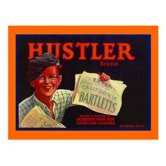 Vintage Paperboy Hustler CA Fruit Crate Postcards