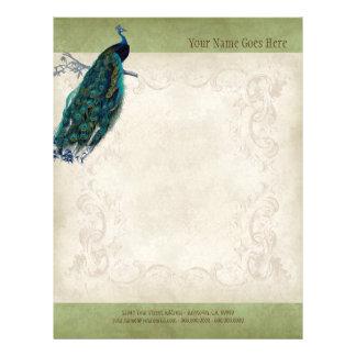 Vintage Parchment Peacock Letterhead Resume Paper