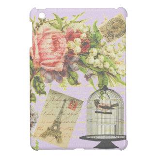 Vintage Paris- Birdcage Case For The iPad Mini