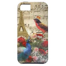 Vintage Paris & birds music sheet collage iPhone 5 Case