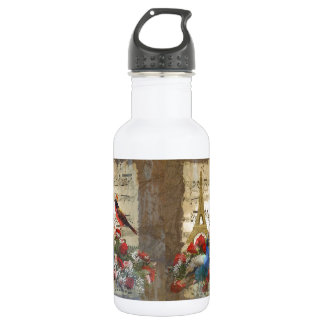 Vintage Paris & birds music sheet collage Stainless Steel Water Bottle