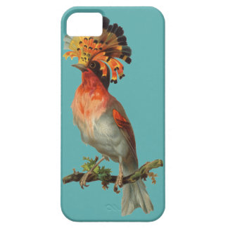 Vintage Parrot iPhone 5 Cover