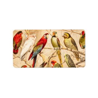 Vintage Parrot Cockatoo Conure Parakeet Cockatiel Label