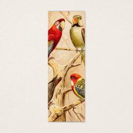 Vintage Parrot Cockatoo Conure Parakeet Cockatiel Mini Business Card