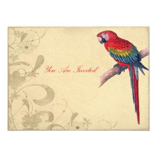Vintage Parrot Illustration Birthday Invites