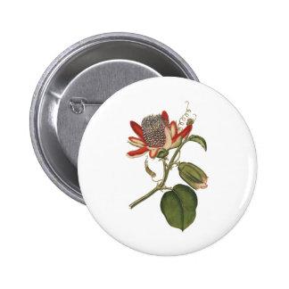Vintage Passion Flower Pinback Button