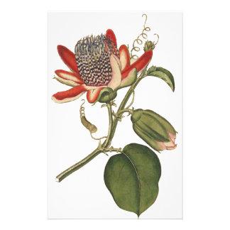 Vintage Passion Flower Stationery