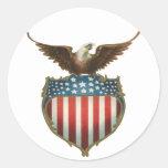 Vintage patriótico, bandera americana con Eagle Etiqueta Redonda