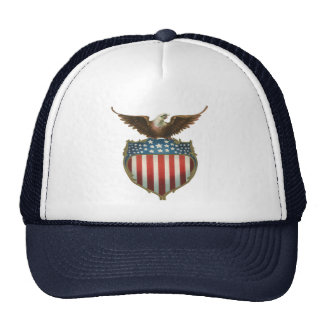 Vintage patriótico, Eagle calvo con la bandera Gorro