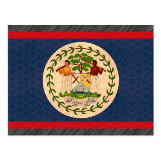 Vintage Pattern Belizean Flag Postcard
