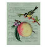 Vintage Peach and Bird Poster