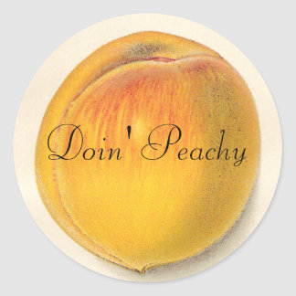 Vintage Peach Stickers