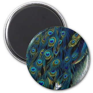 Vintage Peacock 2 Inch Round Magnet
