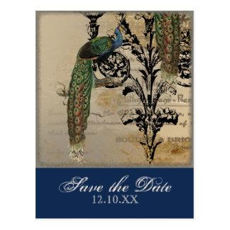 Vintage Peacock 6 Music Notes Candelabra Swirl Postcard