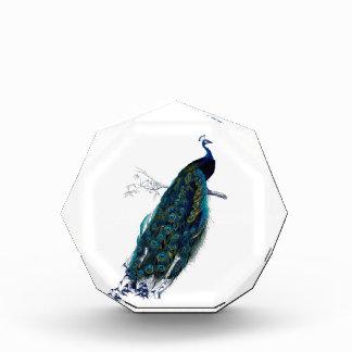 Vintage Peacock Award