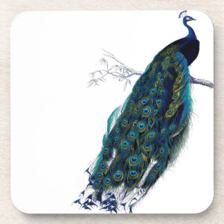 Vintage Peacock Beverage Coaster