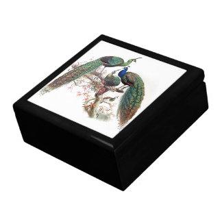 Vintage Peacock Birds Animals Wildlife Gift Box