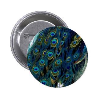 Vintage Peacock Pinback Button