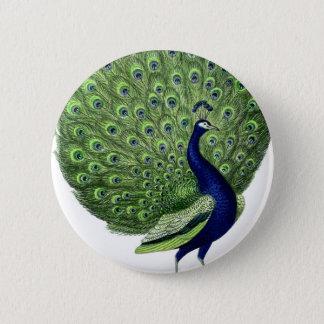 Vintage Peacock Button
