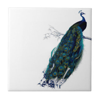 Vintage Peacock Ceramic Tile