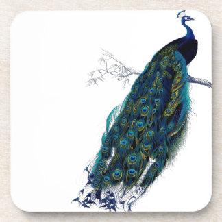 Vintage Peacock Coasters