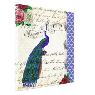 Vintage Peacock Collage canvas print