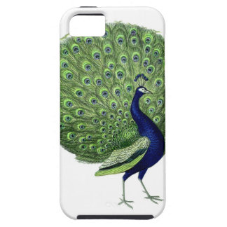 Vintage Peacock Cover For iPhone 5/5S