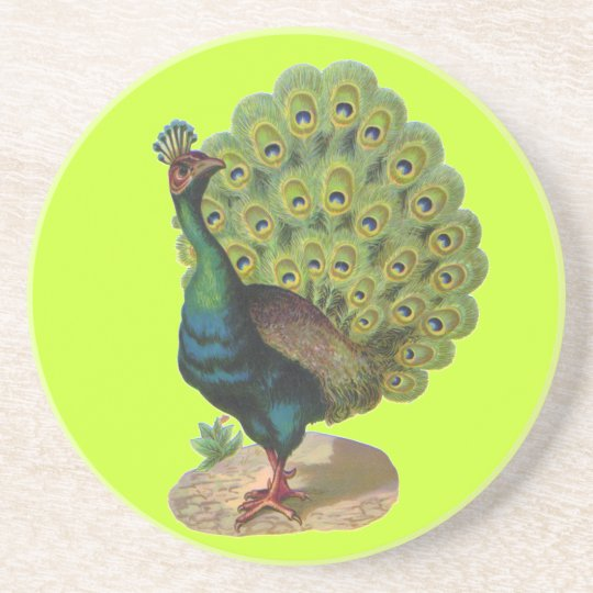Vintage Peacock Drink Coaster