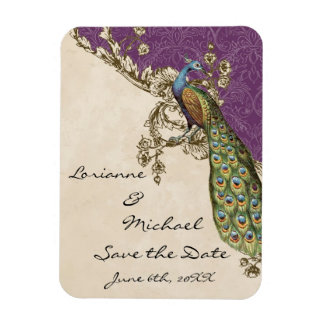 Vintage Peacock Etchings Save the Date Rectangular Magnet